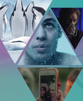 COURTS DE SCIENCES – 17E EDITION