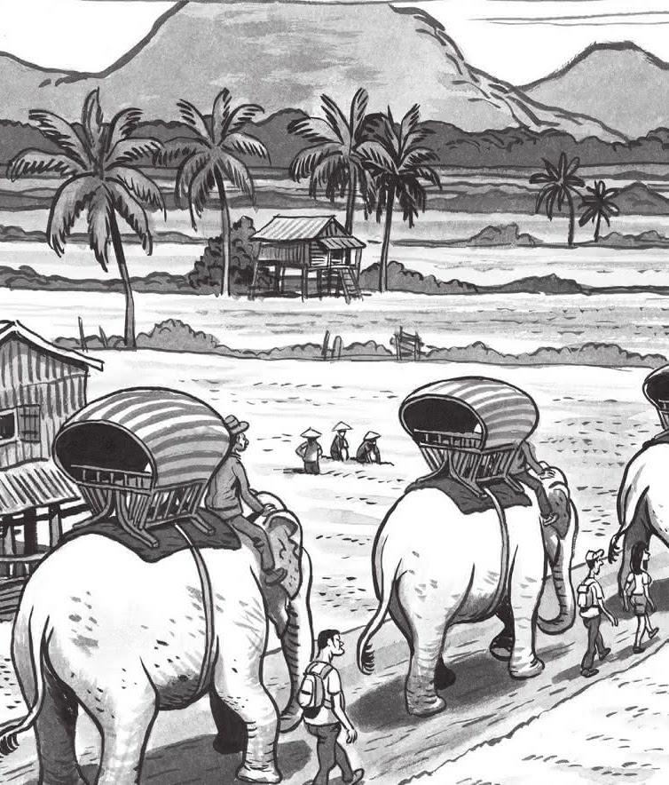 LA LONGUE MARCHE DES ELEPHANTS